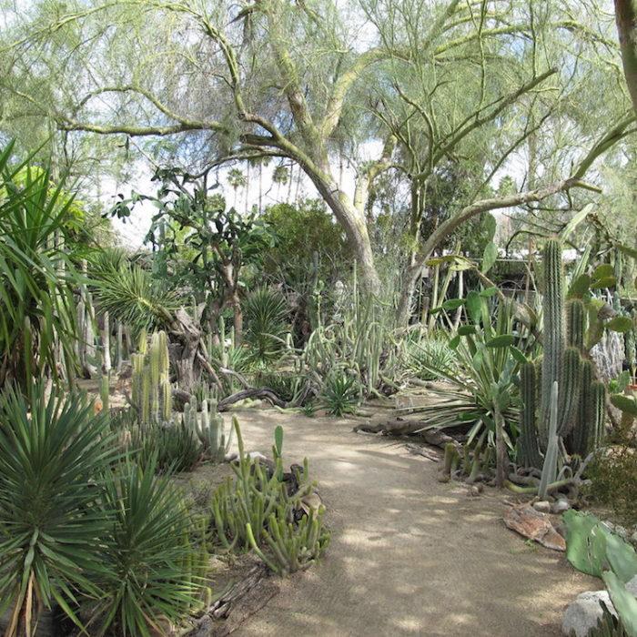tourist destinations palm springs