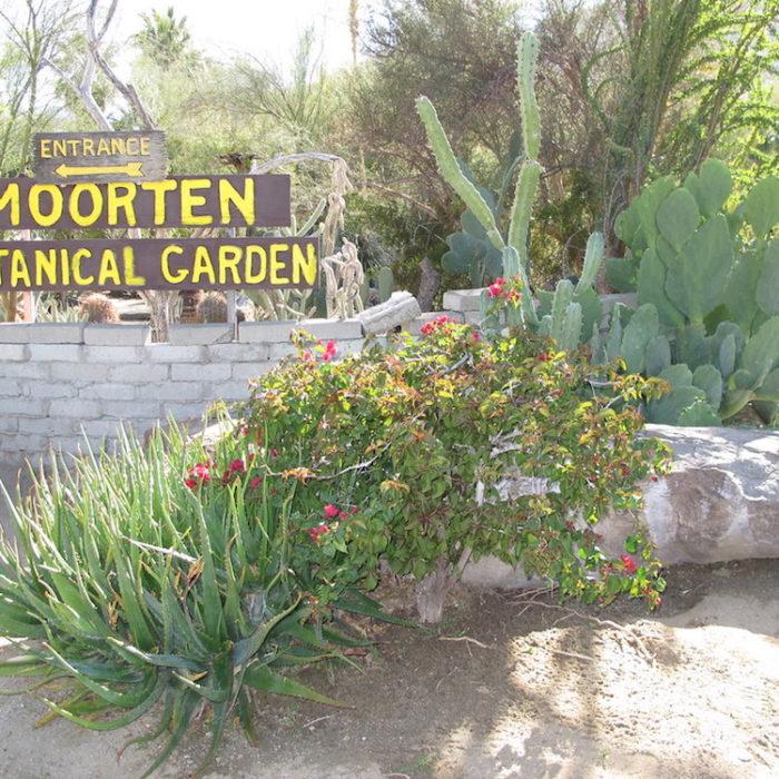 Moorten Botanical Gardens