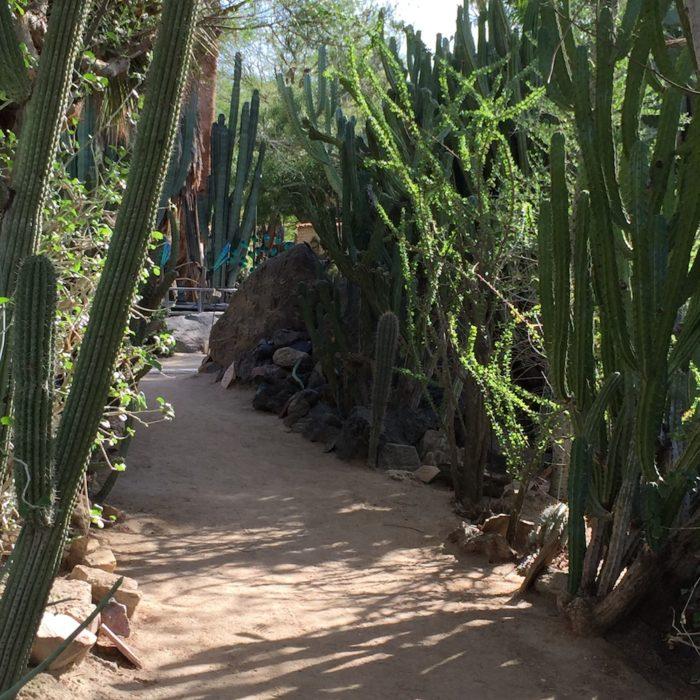 botanical garden in california